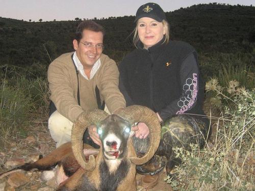 mouflon30